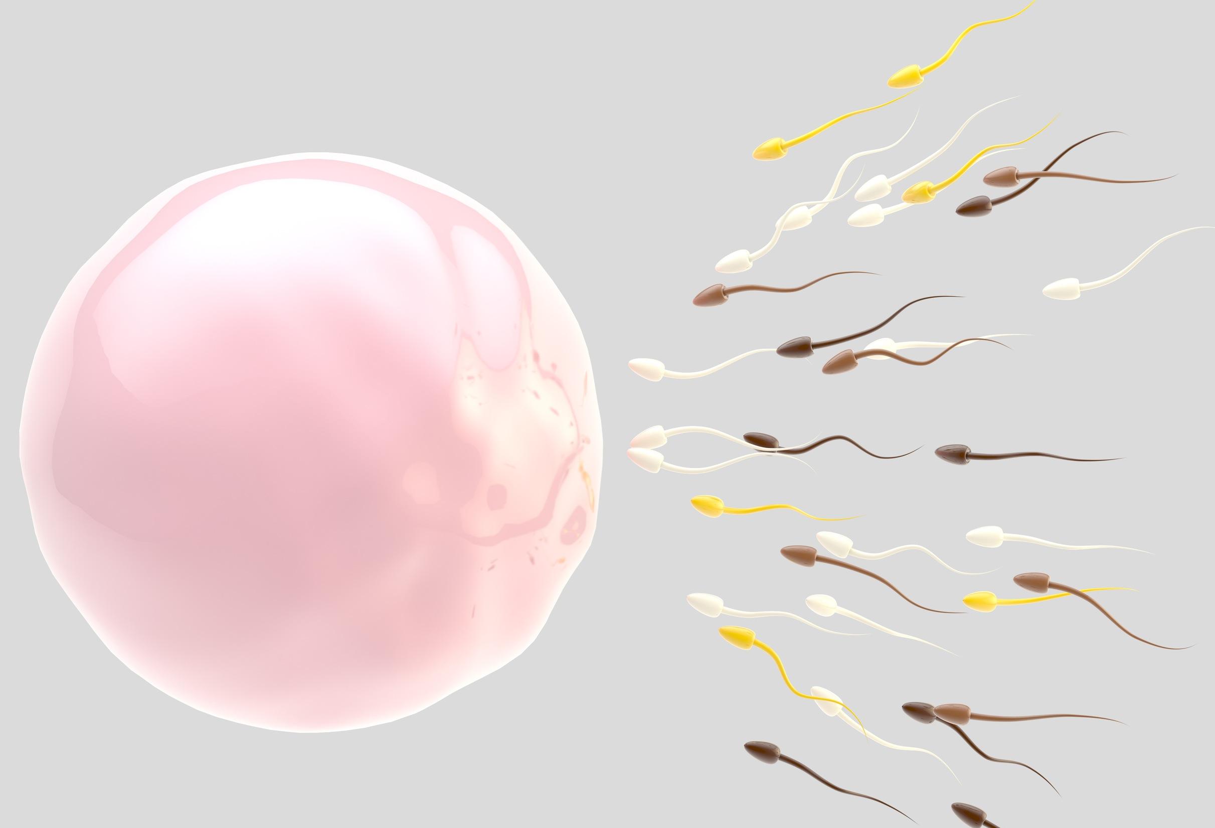 causas-de-infertilidad-alt