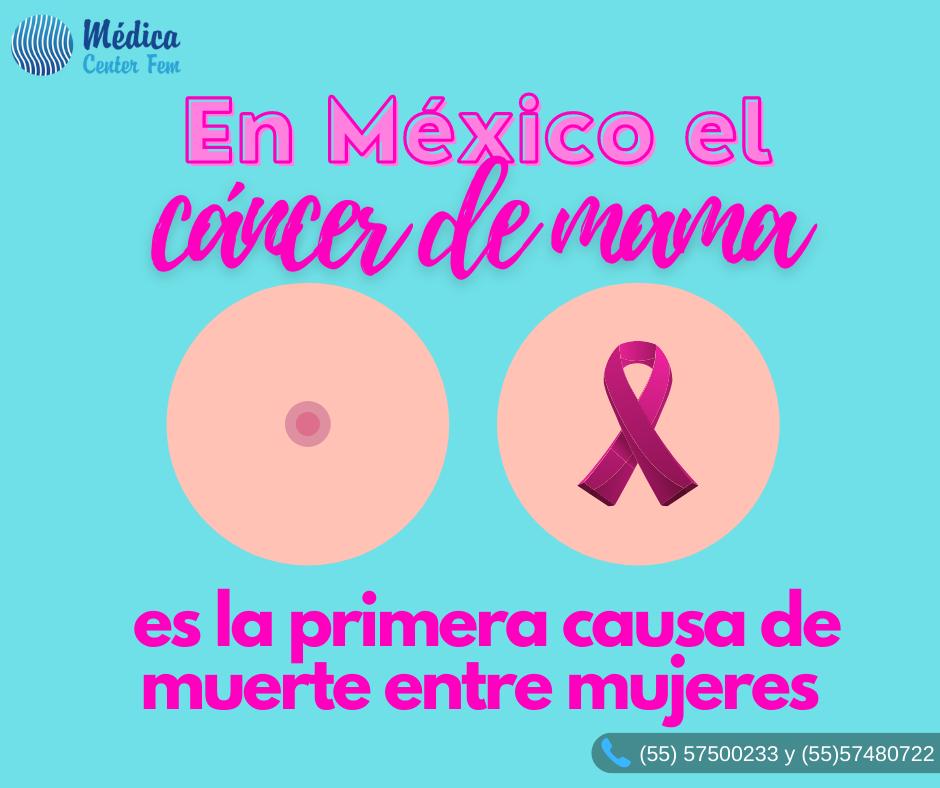La imagen tiene un atributo ALT vacío; su nombre de archivo es cancer-de-mama2.png